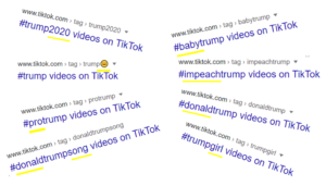 Investigate TikTok Like A Pro!