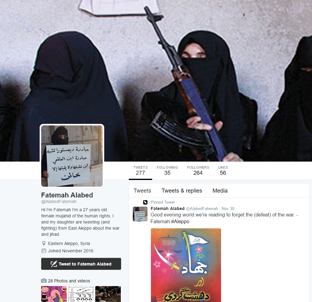 Image 13: Fake Fatemah Account